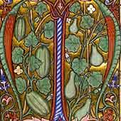 XIV secolo d.C.