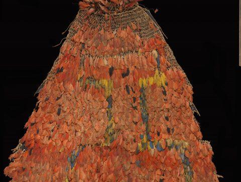 Il mantello cerimoniale Tupinambá