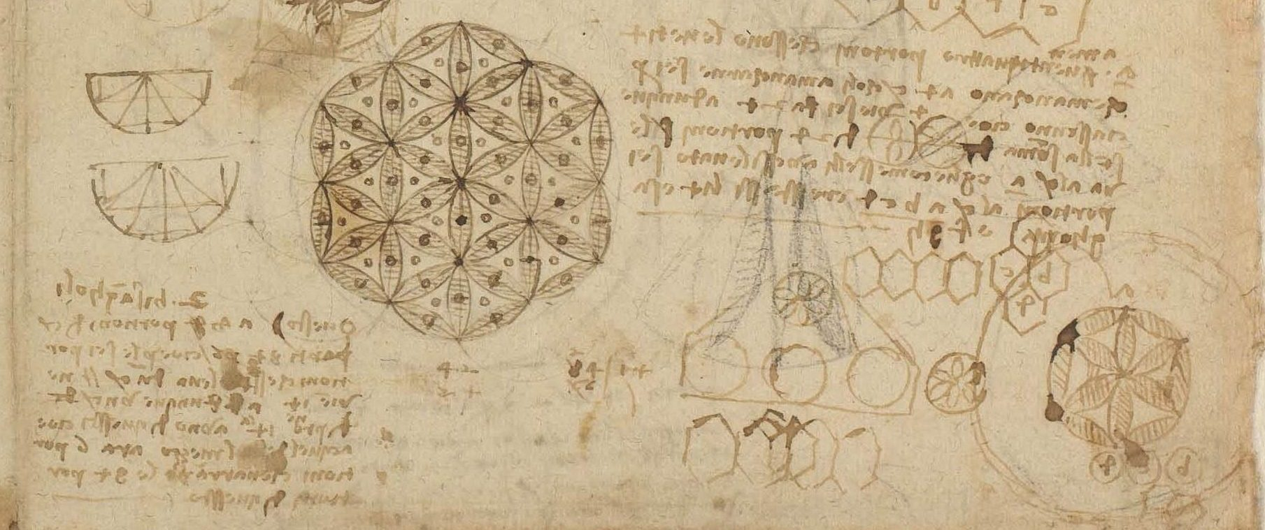 <p>CA f. 482 r: Studies of lunulae and a note in French, 1517-18; detail</p>