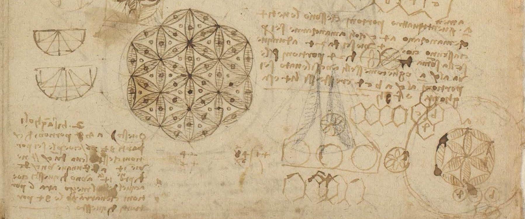 <p>CA f. 482 r: Studi di lunule e una nota in francese, 1517-18; dettaglio</p>