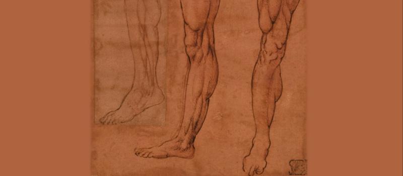 Anatomia, meccanica e visualizzazione. Leonardo da Vinci e Guido da Vigevano