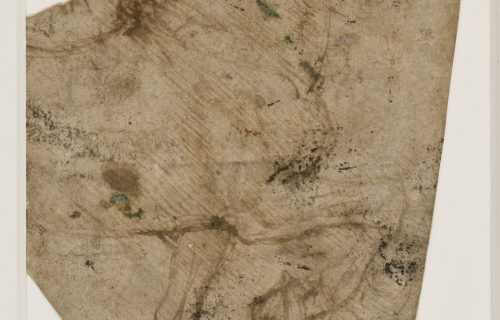 I DISEGNI DELL'AMBROSIANA <br><em>Cavallo al passo</em>, Leonardo da Vinci